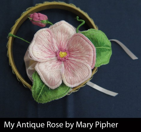 My-Antique-Rose-by-Mary-Pipher_W
